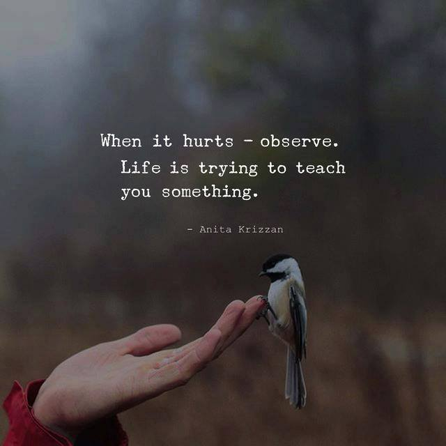 When it hurts - observe. Life is trying to teach you something.